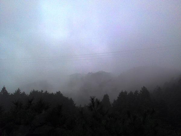 ますます霧
